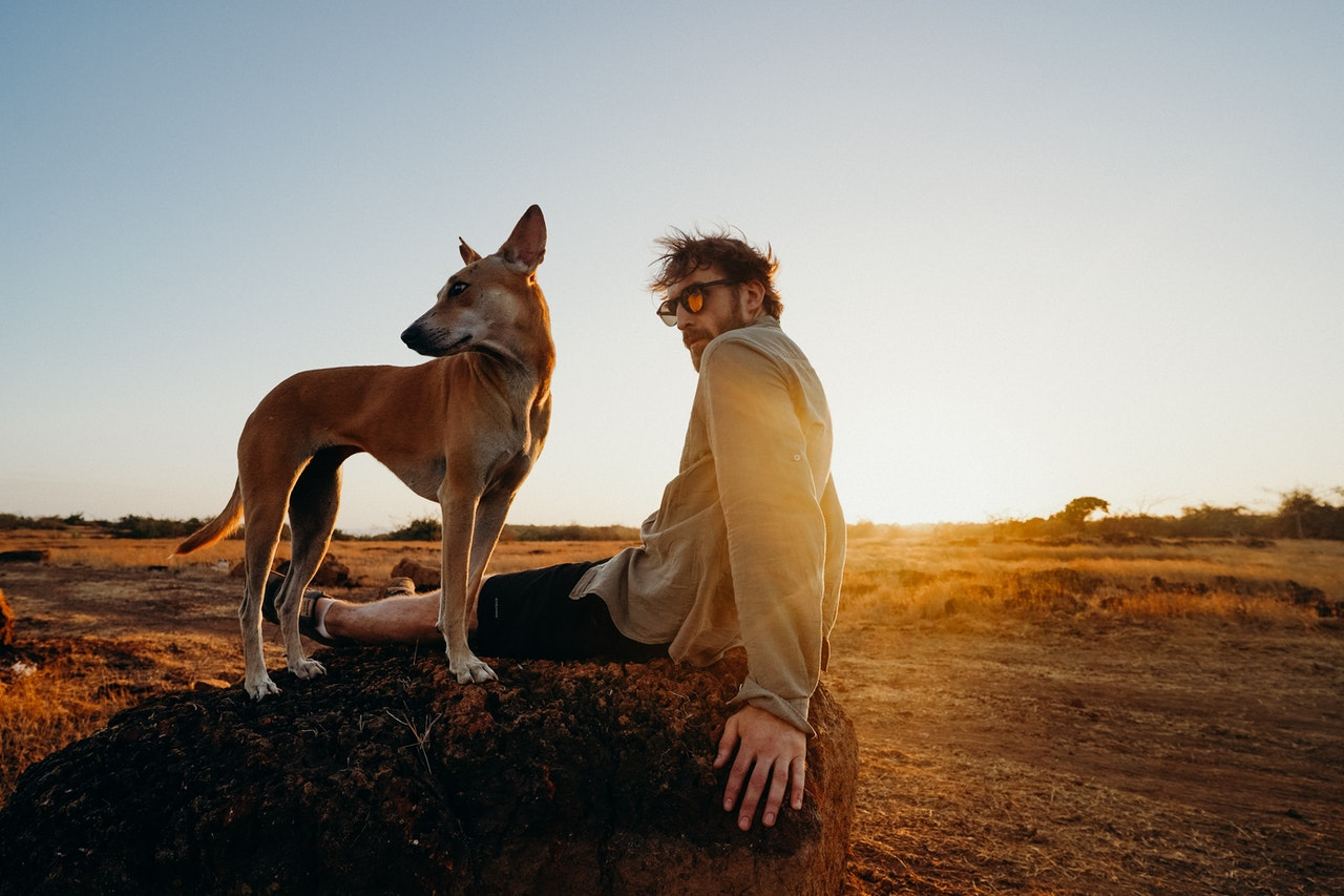 man travelling with a dog